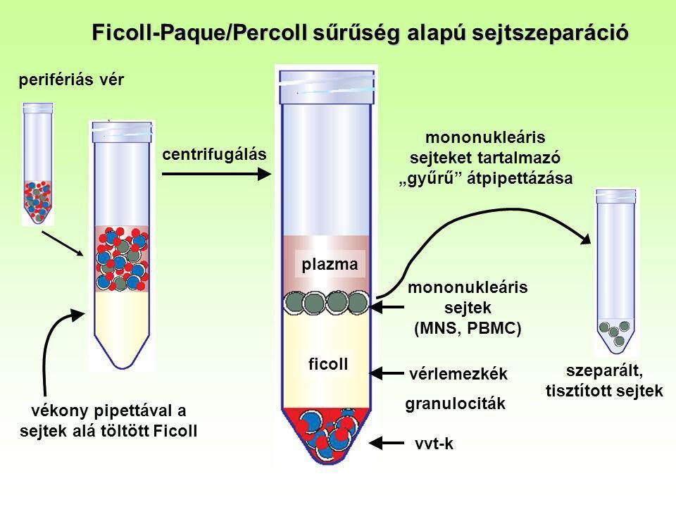 Ficoll-Paque/Percoll sűrűség alapú sejtszeparáció