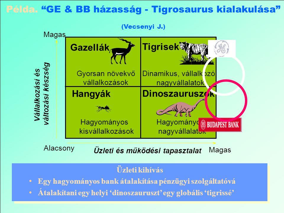 Példa. GE & BB házasság - Tigrosaurus kialakulása (Vecsenyi J.)
