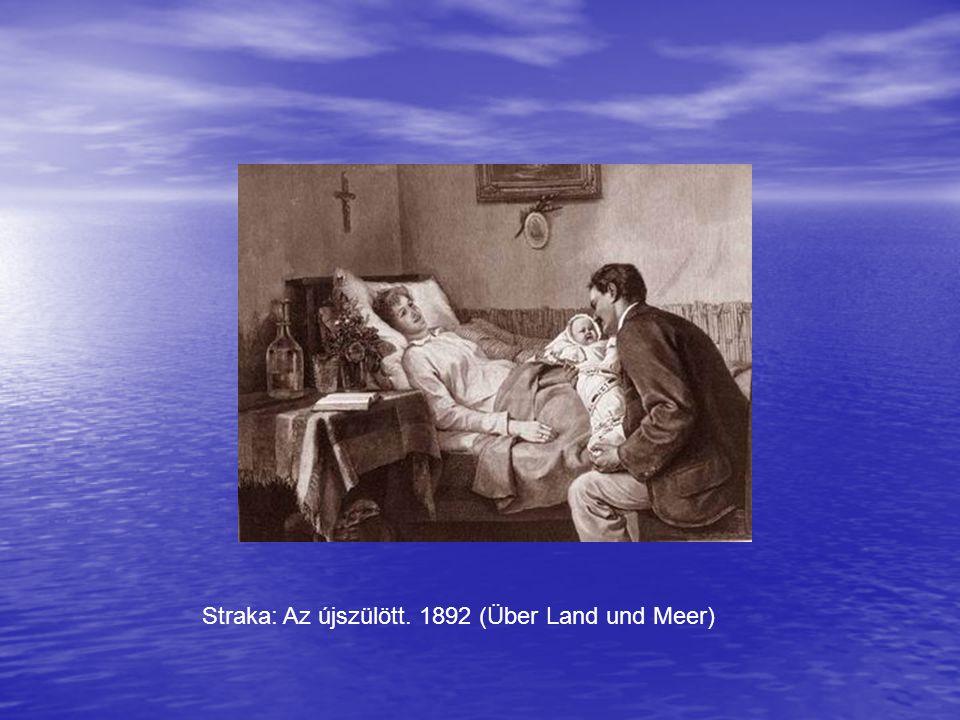 Straka: Az újszülött. 1892 (Über Land und Meer)