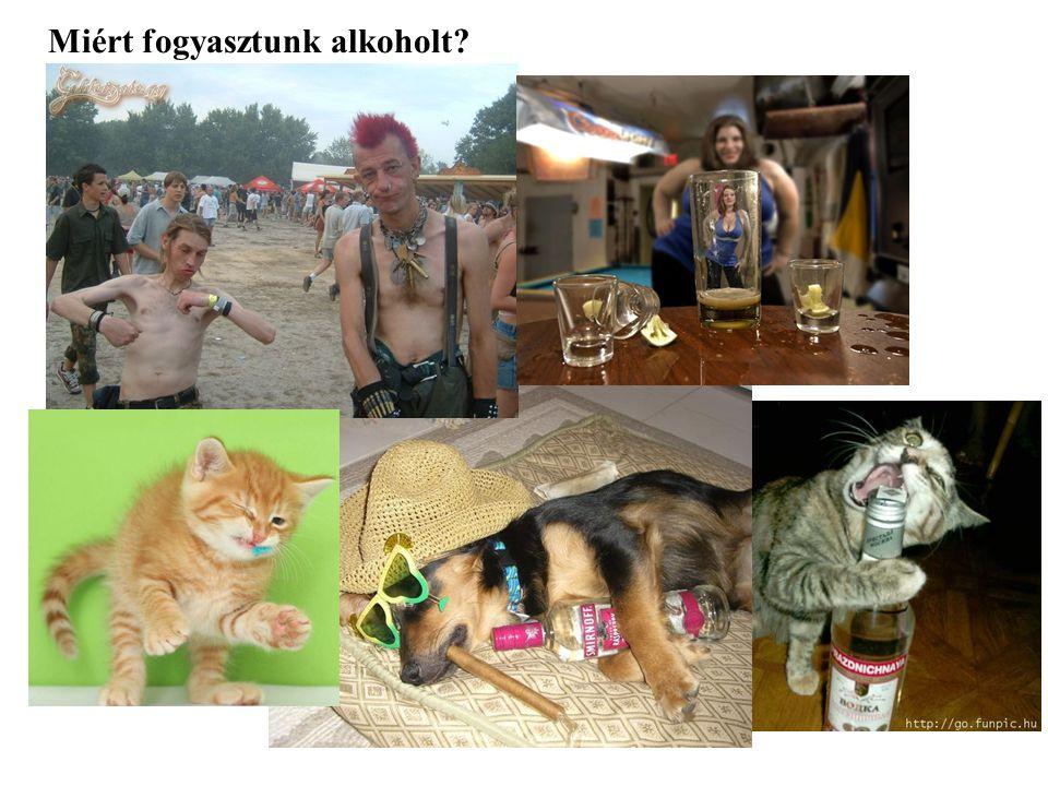 Miért fogyasztunk alkoholt