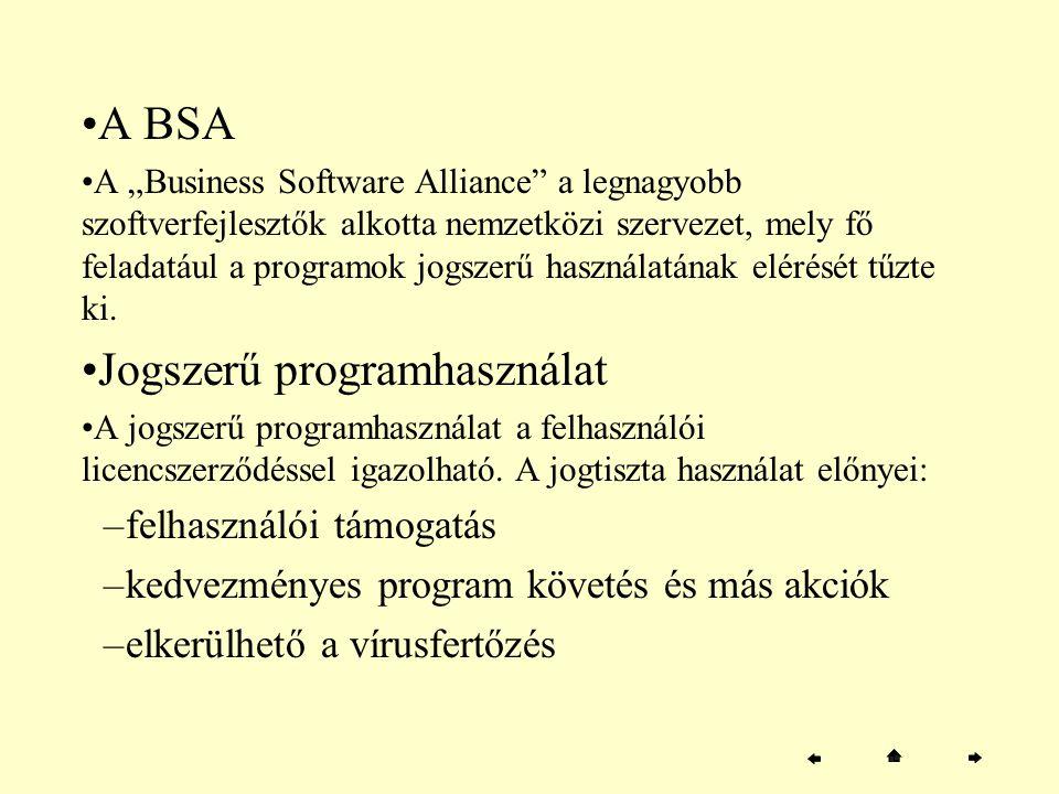 Jogszerű programhasználat