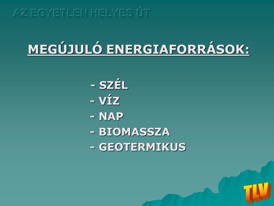 MEGÚJULÓ ENERGIAFORRÁSOK: - SZÉL - VÍZ - NAP - BIOMASSZA - GEOTERMIKUS