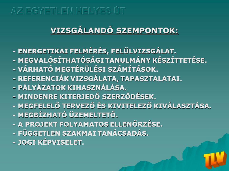 VIZSGÁLANDÓ SZEMPONTOK:
