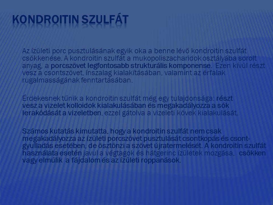 KONDROITIN SZULFÁT