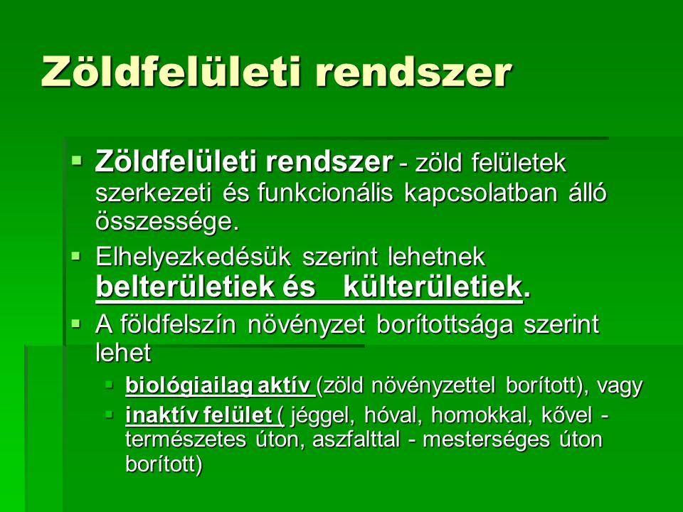 Zöldfelületi rendszer