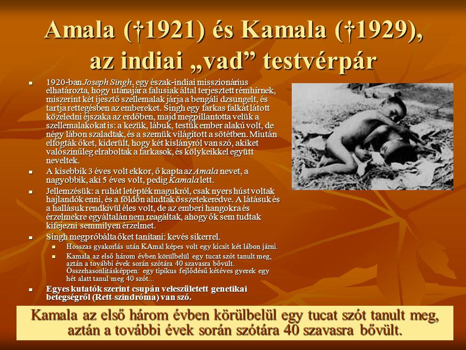 """Amala (†1921) és Kamala (†1929), az indiai """"vad testvérpár"""