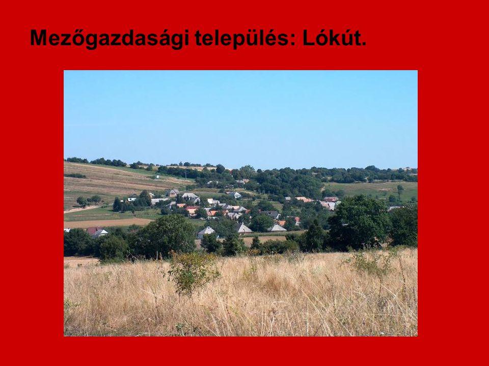 Mezőgazdasági település: Lókút.
