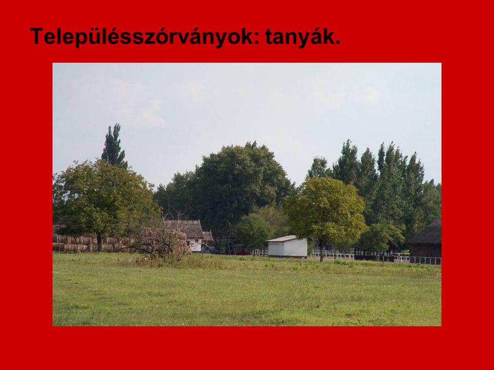 Településszórványok: tanyák.