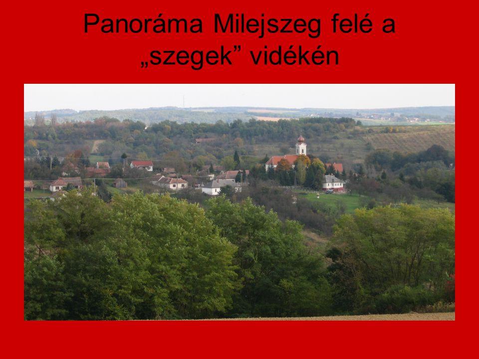 """Panoráma Milejszeg felé a """"szegek vidékén"""