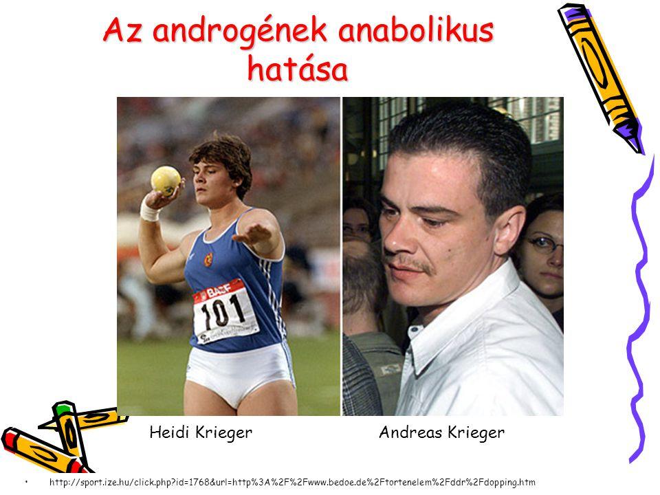 Az androgének anabolikus hatása