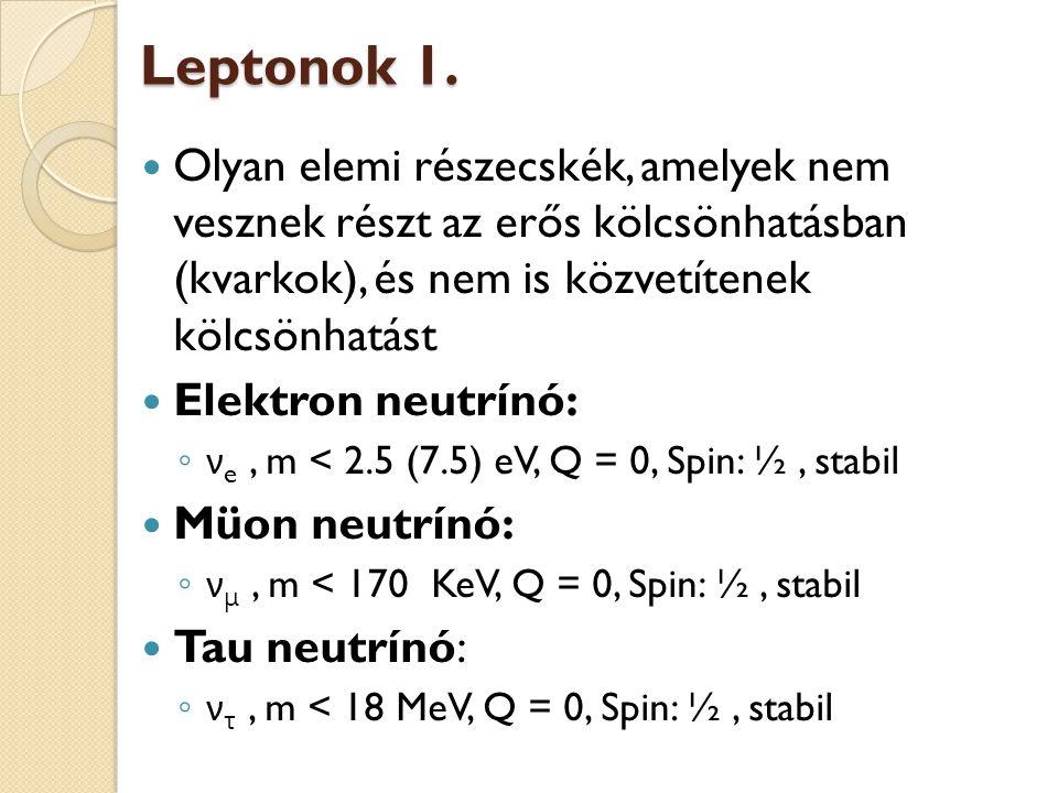 Leptonok 1. Olyan elemi részecskék, amelyek nem vesznek részt az erős kölcsönhatásban (kvarkok), és nem is közvetítenek kölcsönhatást.