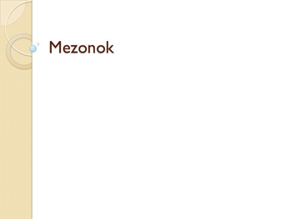 Mezonok