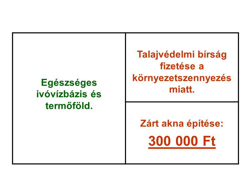 300 000 Ft Talajvédelmi bírság fizetése a környezetszennyezés miatt.