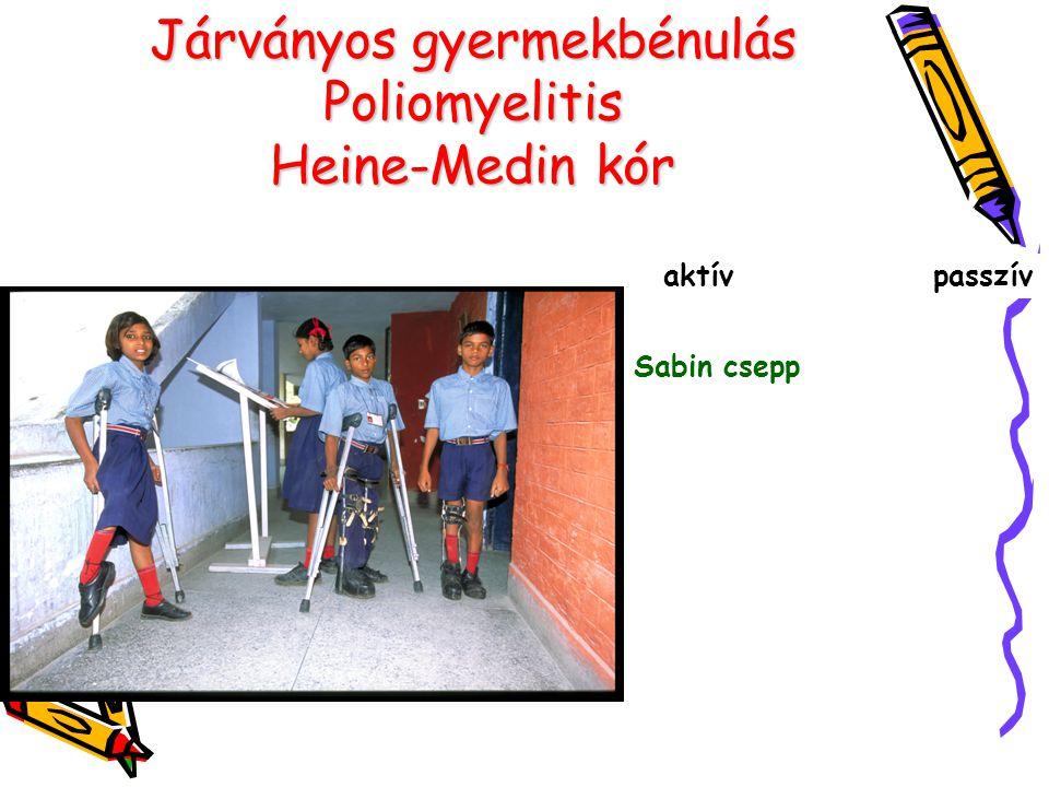 Járványos gyermekbénulás Poliomyelitis Heine-Medin kór