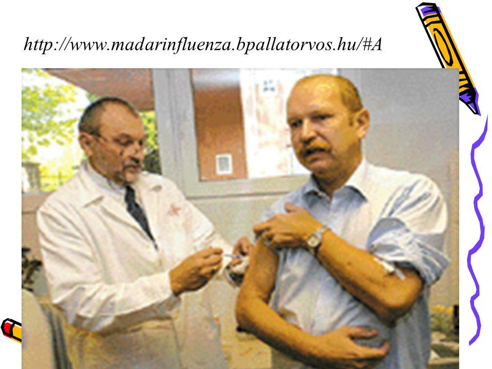 http://www.madarinfluenza.bpallatorvos.hu/#A 42