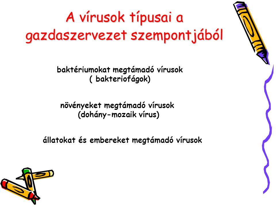 A vírusok típusai a gazdaszervezet szempontjából