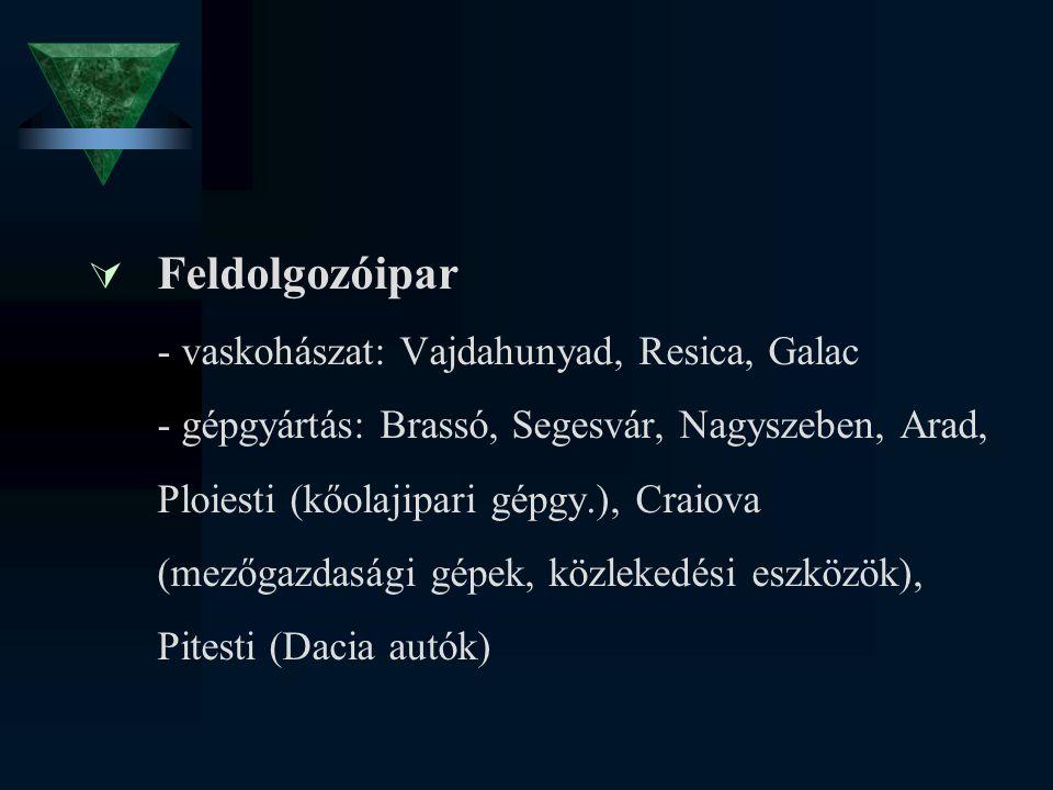 Feldolgozóipar - vaskohászat: Vajdahunyad, Resica, Galac - gépgyártás: Brassó, Segesvár, Nagyszeben, Arad, Ploiesti (kőolajipari gépgy.), Craiova (mezőgazdasági gépek, közlekedési eszközök), Pitesti (Dacia autók)