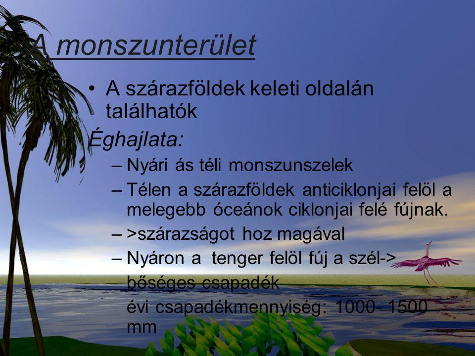 A monszunterület A szárazföldek keleti oldalán találhatók Éghajlata:
