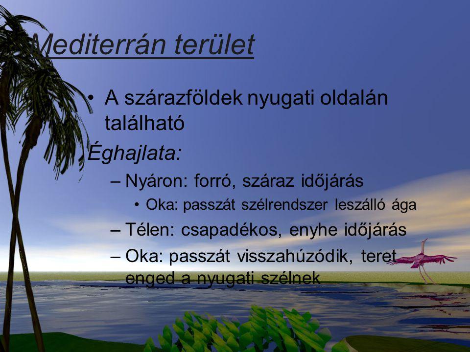 Mediterrán terület A szárazföldek nyugati oldalán található Éghajlata: