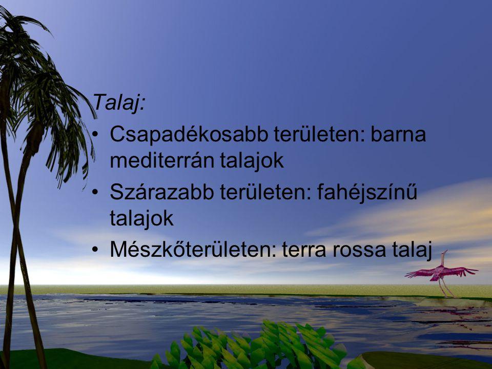 Talaj: Csapadékosabb területen: barna mediterrán talajok. Szárazabb területen: fahéjszínű talajok.