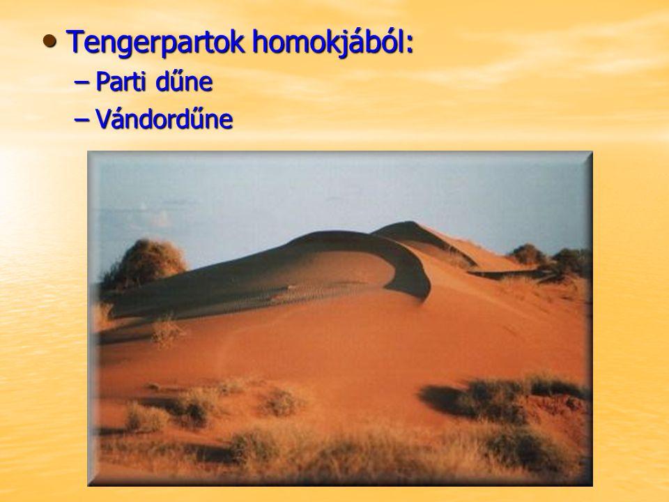 Tengerpartok homokjából: