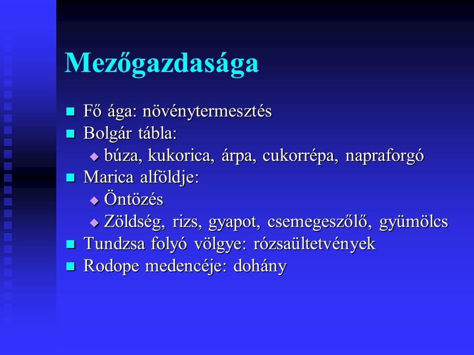 Mezőgazdasága Fő ága: növénytermesztés Bolgár tábla: