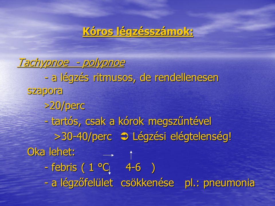 Kóros légzésszámok: Tachypnoe - polypnoe. - a légzés ritmusos, de rendellenesen szapora. >20/perc.