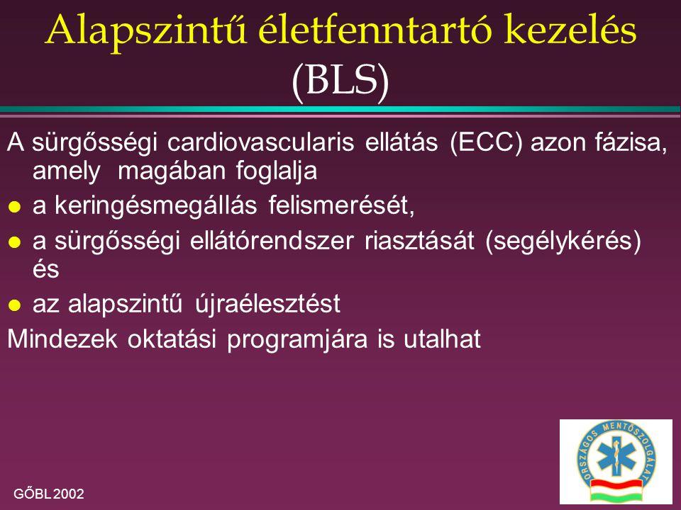Alapszintű életfenntartó kezelés (BLS)
