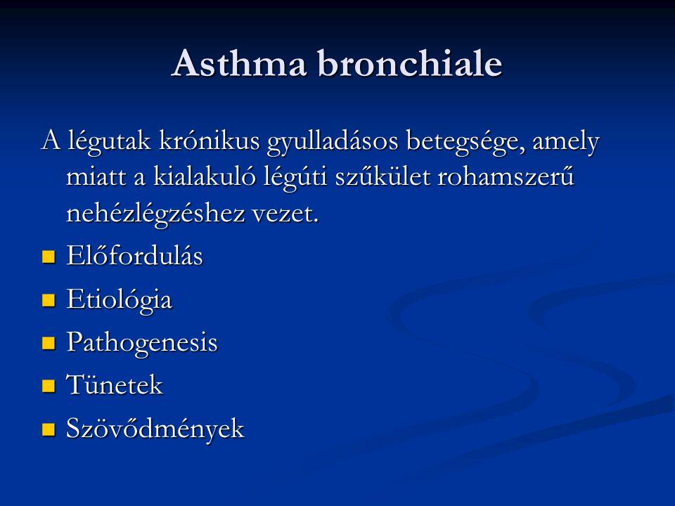 Asthma bronchiale A légutak krónikus gyulladásos betegsége, amely miatt a kialakuló légúti szűkület rohamszerű nehézlégzéshez vezet.