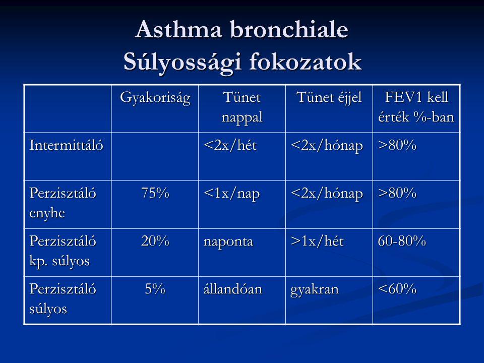 Asthma bronchiale Súlyossági fokozatok