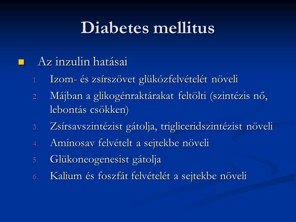 Diabetes mellitus Az inzulin hatásai