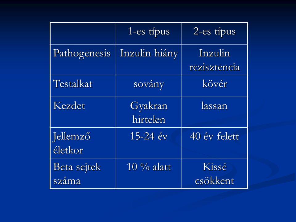 1-es típus 2-es típus. Pathogenesis. Inzulin hiány. Inzulin rezisztencia. Testalkat. sovány. kövér.