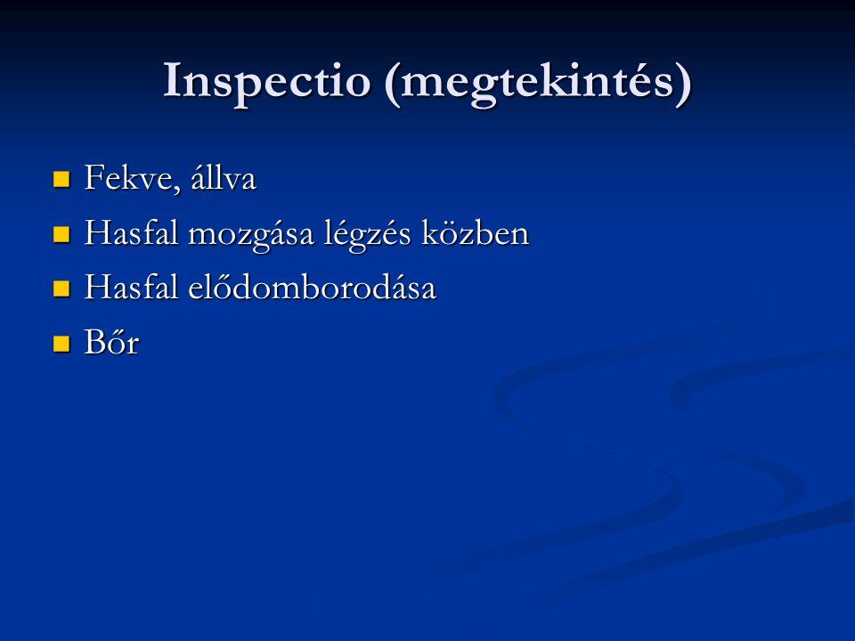 Inspectio (megtekintés)
