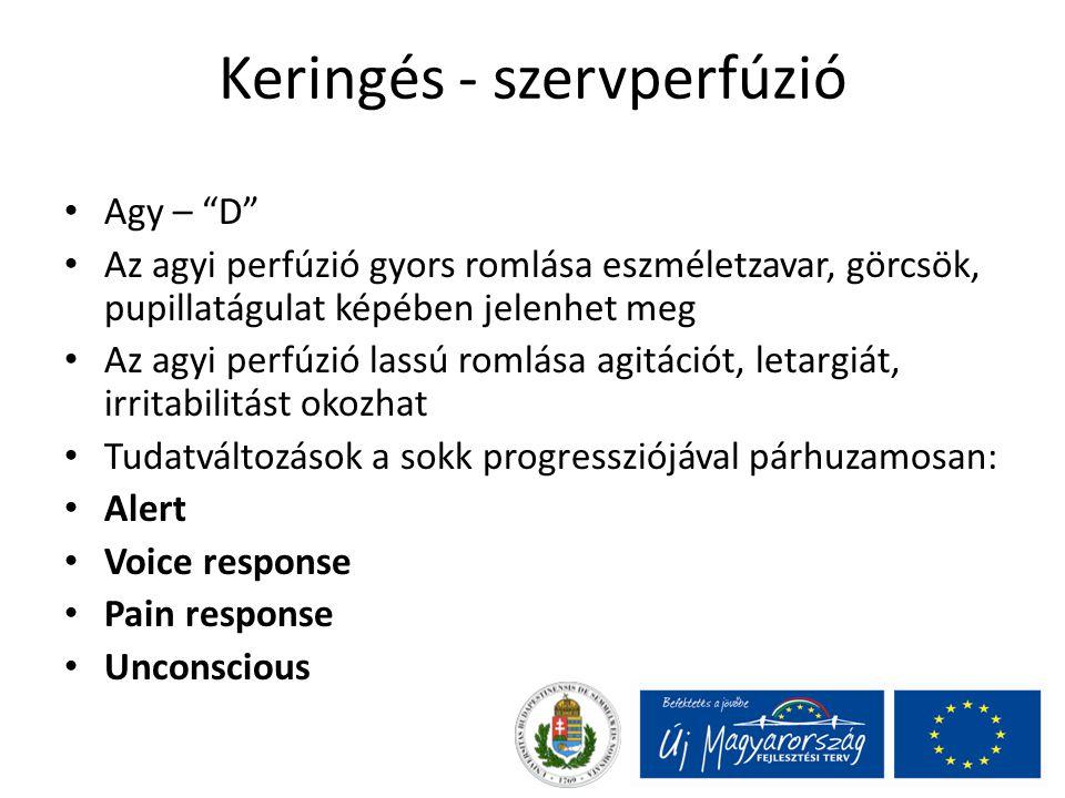 Keringés - szervperfúzió