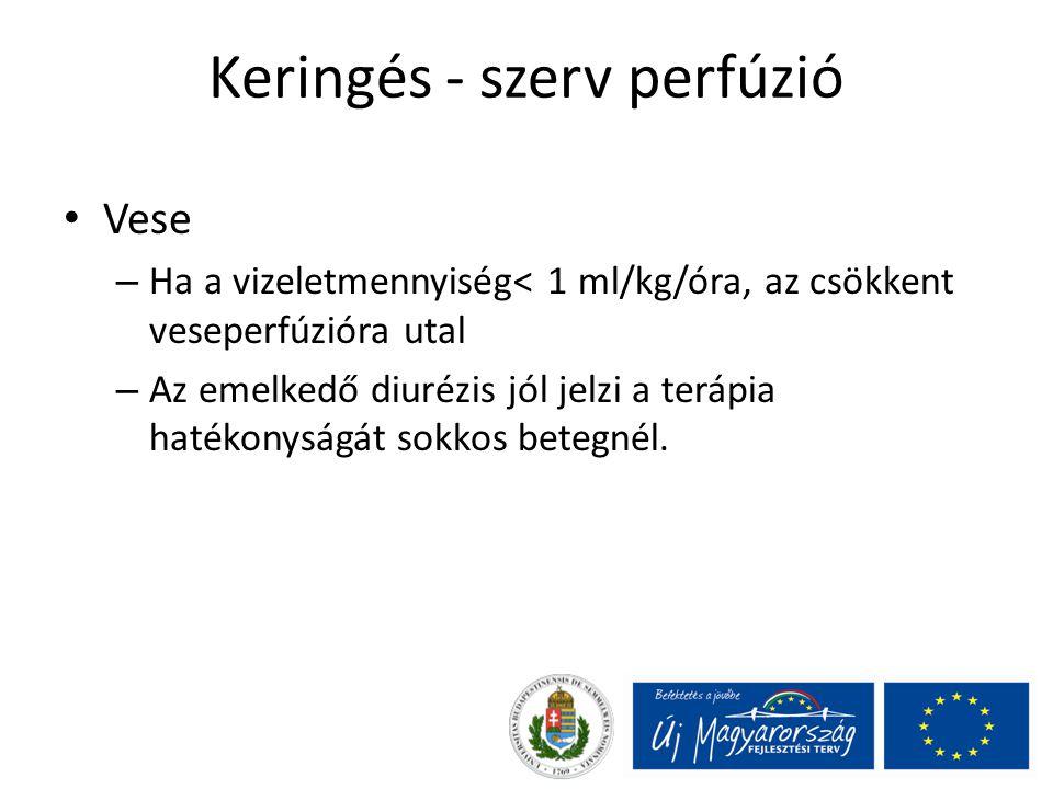 Keringés - szerv perfúzió