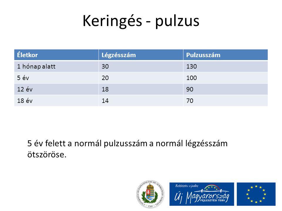 Keringés - pulzus Életkor. Légzésszám. Pulzusszám. 1 hónap alatt. 30. 130. 5 év. 20. 100. 12 év.