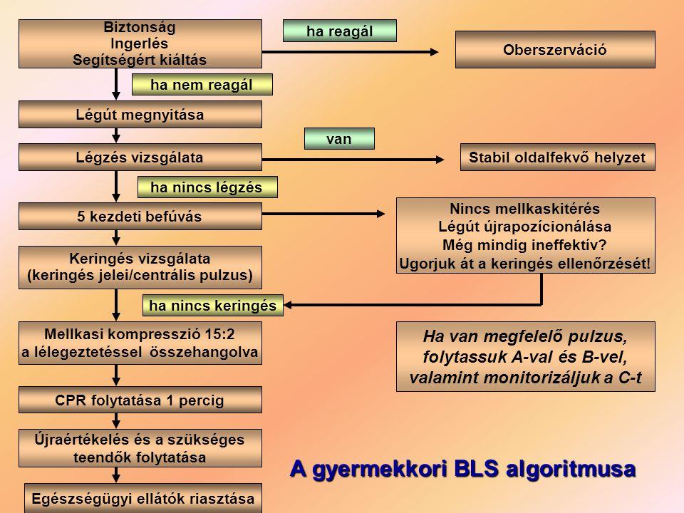 A gyermekkori BLS algoritmusa