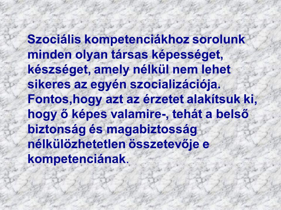Szociális kompetenciákhoz sorolunk minden olyan társas képességet, készséget, amely nélkül nem lehet sikeres az egyén szocializációja.
