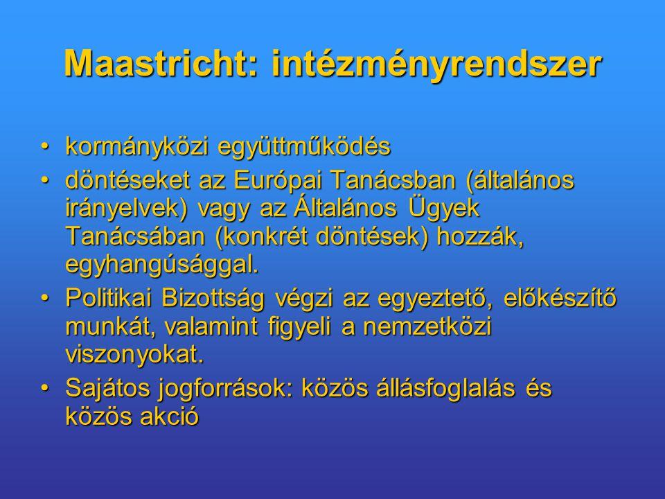 Maastricht: intézményrendszer