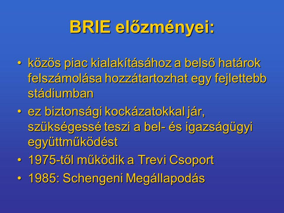 BRIE előzményei: közös piac kialakításához a belső határok felszámolása hozzátartozhat egy fejlettebb stádiumban.
