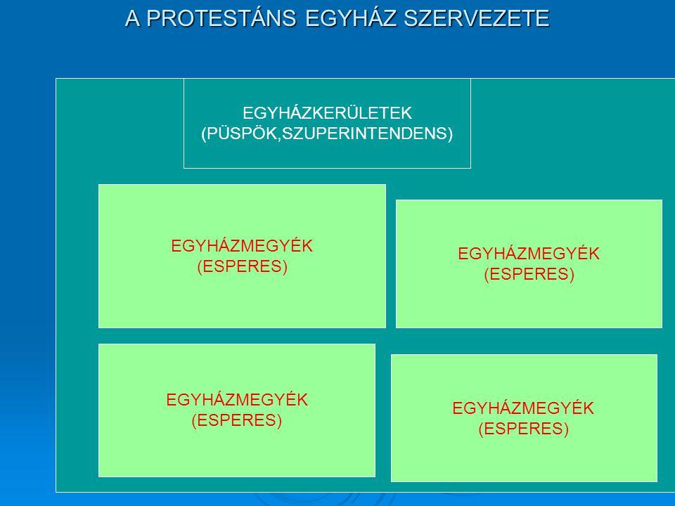 A PROTESTÁNS EGYHÁZ SZERVEZETE