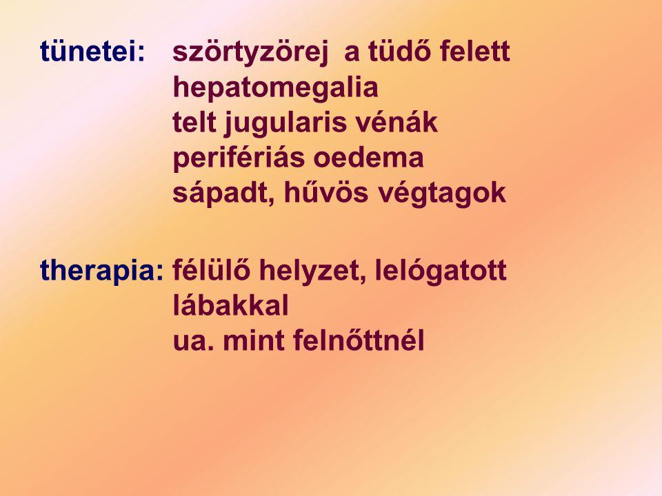 tünetei:. szörtyzörej a tüdő felett. hepatomegalia