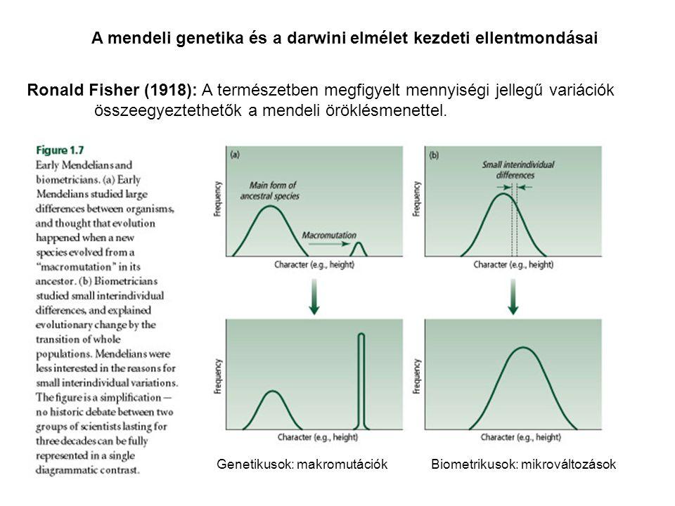 A mendeli genetika és a darwini elmélet kezdeti ellentmondásai