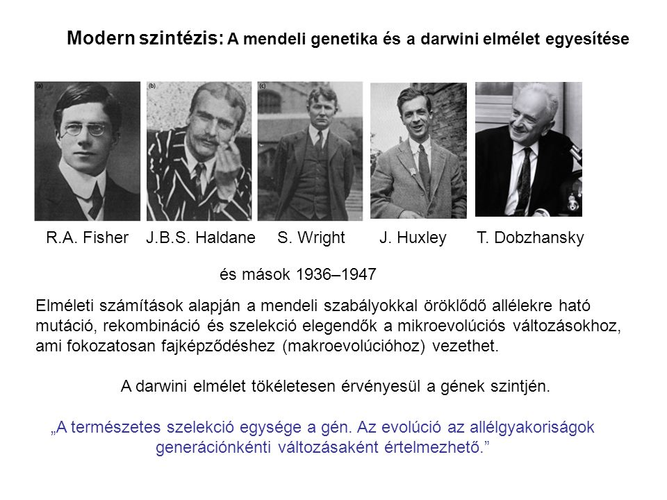 A darwini elmélet tökéletesen érvényesül a gének szintjén.