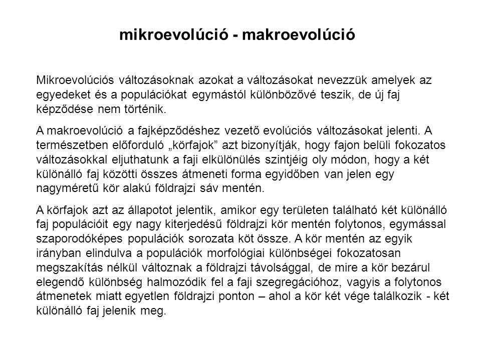 mikroevolúció - makroevolúció