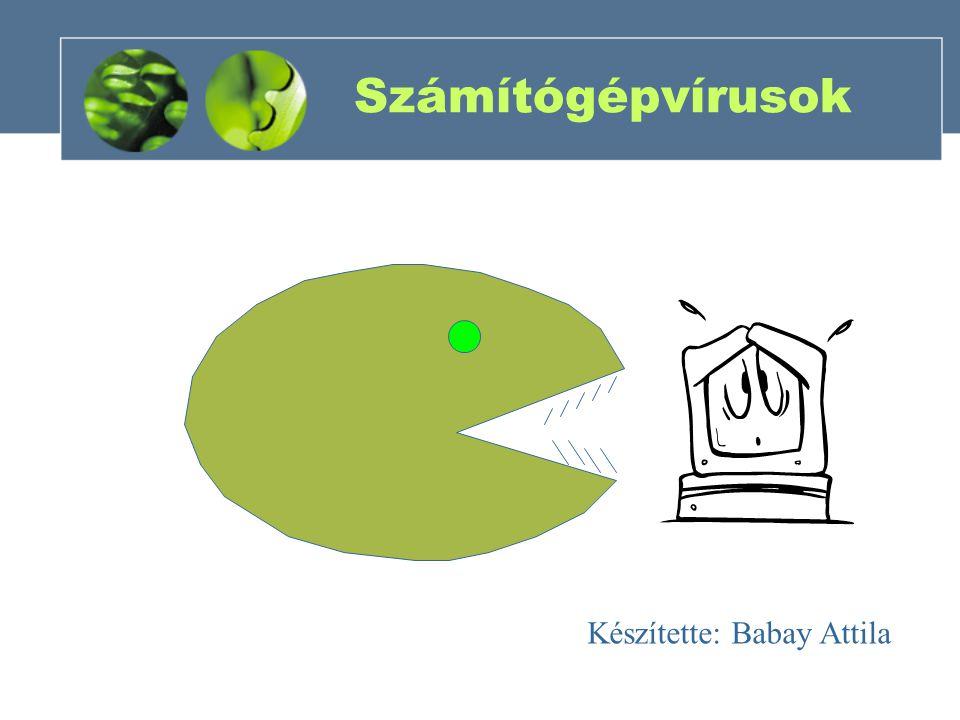 Számítógépvírusok Készítette: Babay Attila