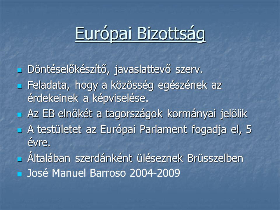 Európai Bizottság Döntéselőkészítő, javaslattevő szerv.