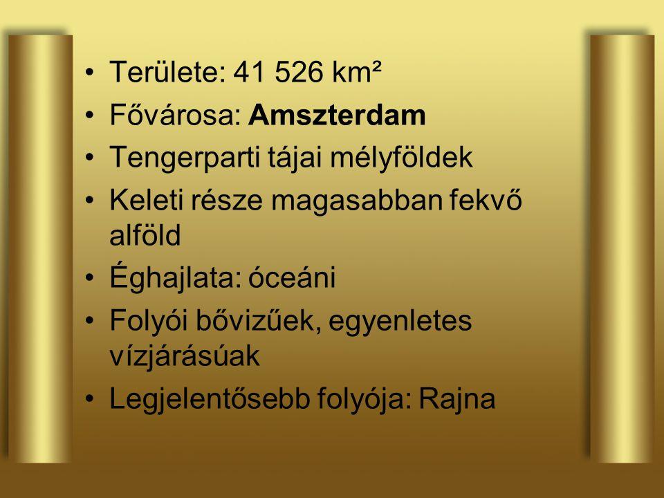 Területe: 41 526 km² Fővárosa: Amszterdam. Tengerparti tájai mélyföldek. Keleti része magasabban fekvő alföld.