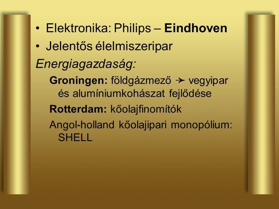 Elektronika: Philips – Eindhoven Jelentős élelmiszeripar