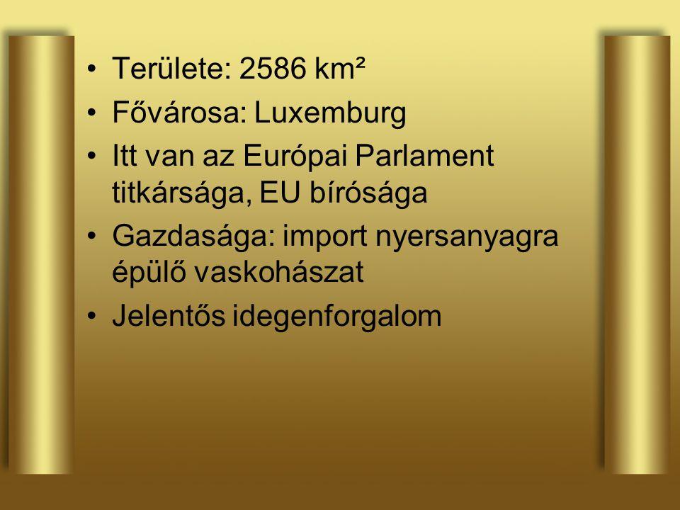 Területe: 2586 km² Fővárosa: Luxemburg. Itt van az Európai Parlament titkársága, EU bírósága. Gazdasága: import nyersanyagra épülő vaskohászat.